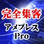 インターネット総合集客ツール アメプレスPro 画像