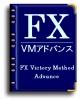 あなたがFXで1番知りたかったこと。先進のFXビクトリーメソッド【アドバンス】完全 画像