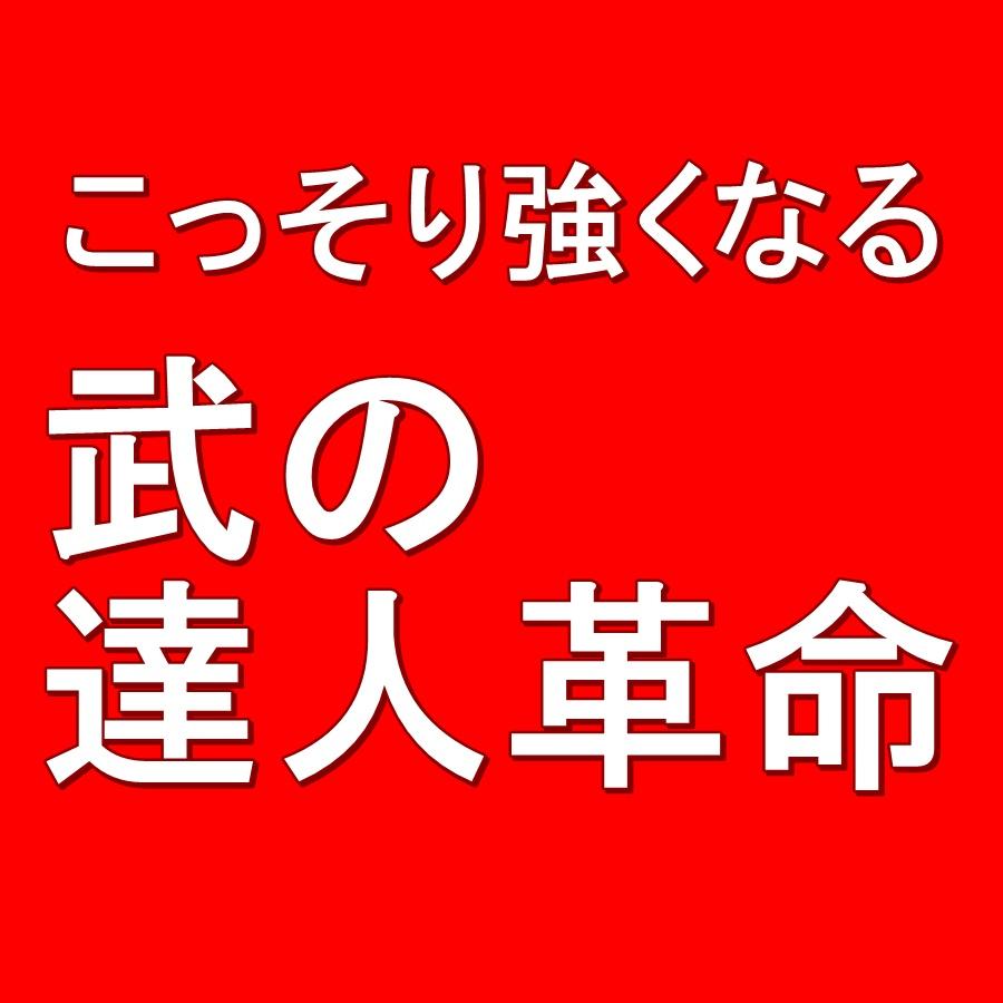 武の達人革命〜特別通信講座〜 画像
