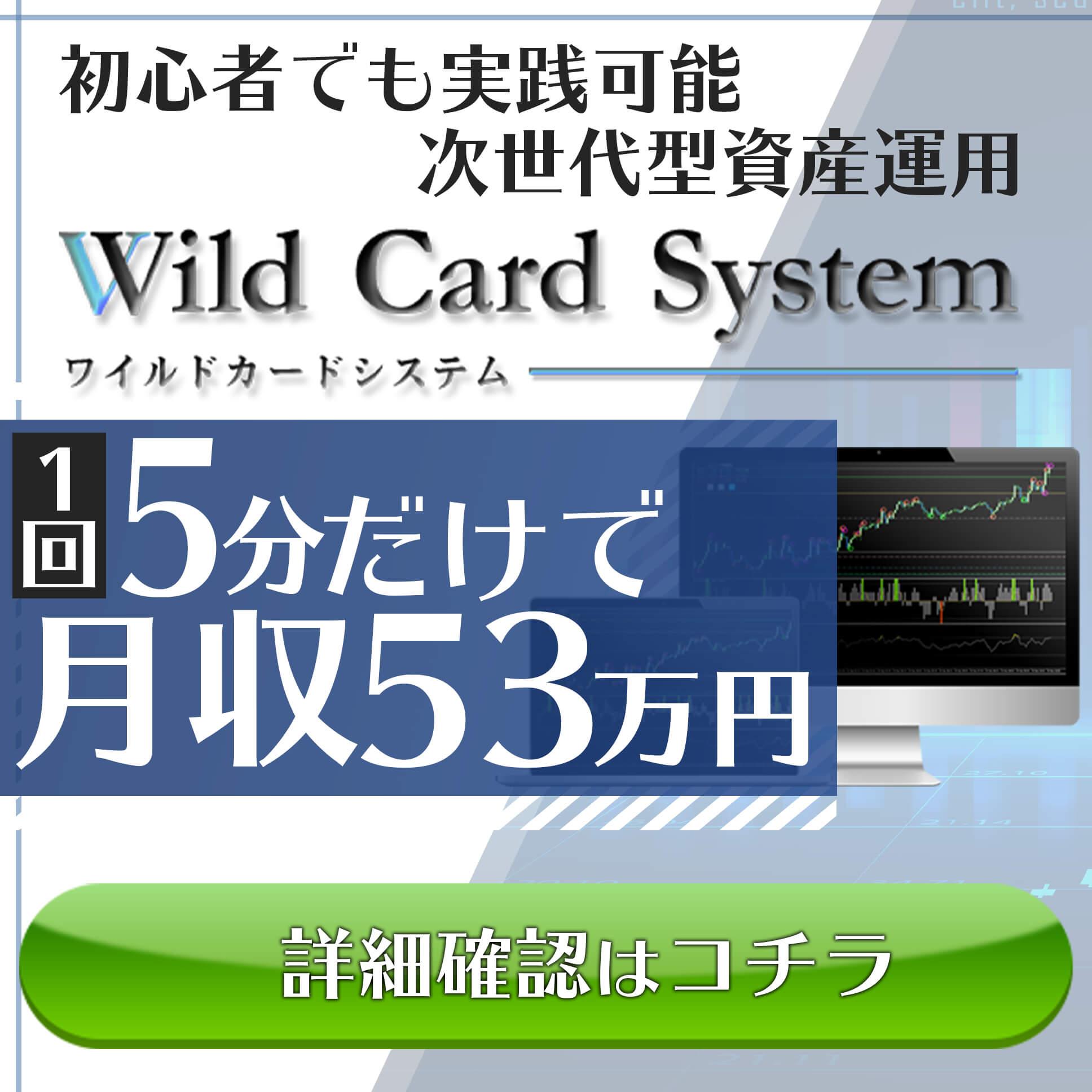 WildCardSystem(ワイルドカードシステム) 画像